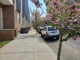 Philadelphia Perspective Photos